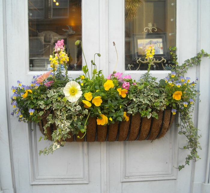 Window box used on a door