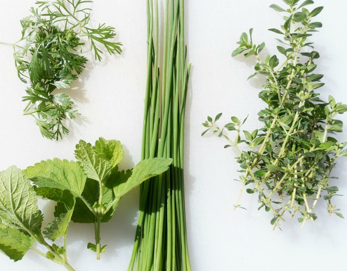 Herbs get pruned naturally as you snip them for use.
