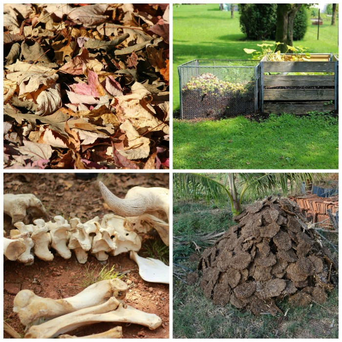 Natural fertilizers such as mulch, compost, bone meal and manure make your soil more fertile