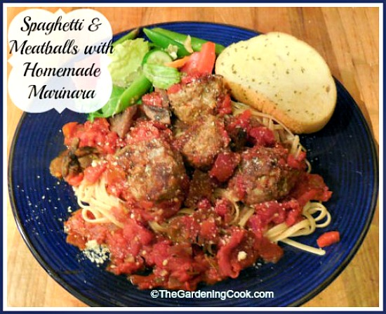 Spaghetti and Meatballs with a Marinara Sauce