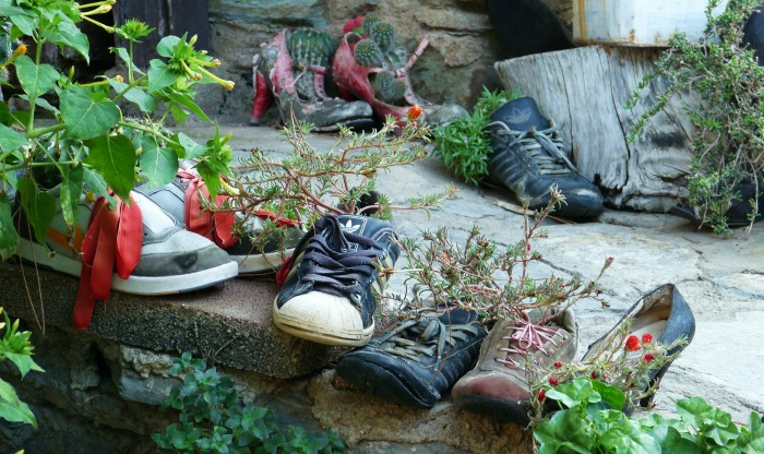 Shoes used as planters