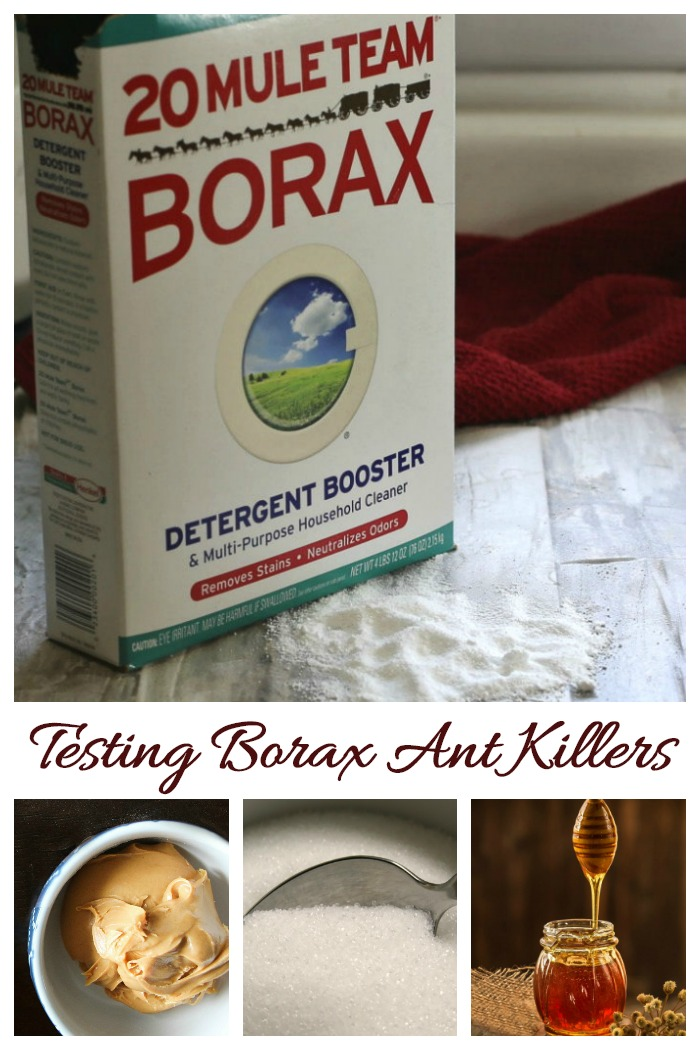 Why use Borax as an ant killer?