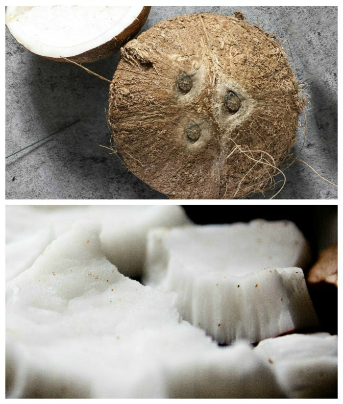 Whole coconut and fresh coconut pieces
