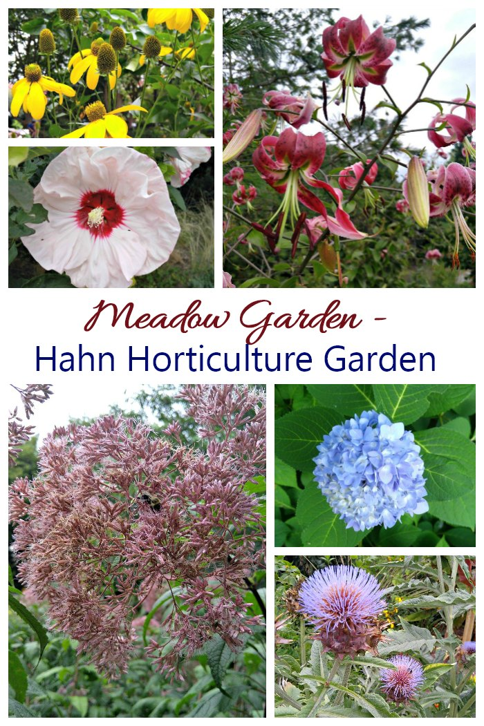 Meadow Garden Hahn Horticulture Garden in Virginia