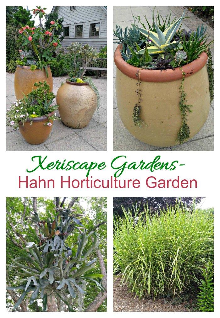 Xeriscape gardens at Hahn Horticulture Gardens