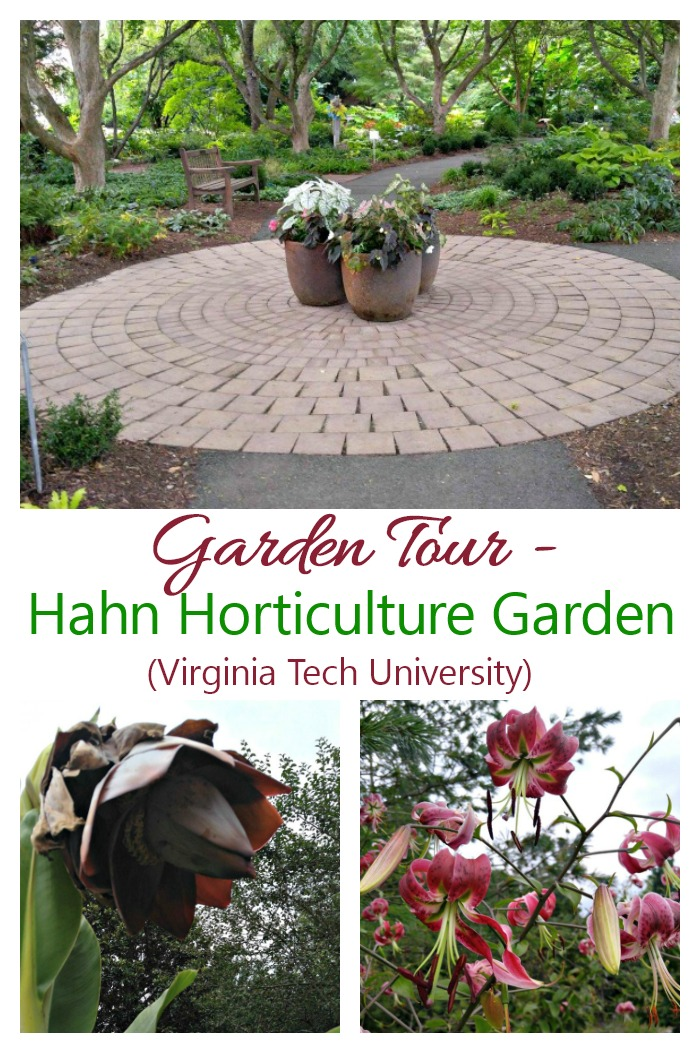 Join me in a garden tour of The Hahn Horticulture Garden at Virginia Tech University in Blacksburg, VA.
