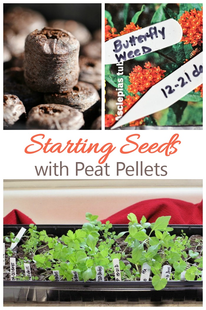 Starting Seeds Indoors with Jiffy Peat Pellets - How to Grow Seeds in Peat Pots. See my step by step tutorial, including planting tips.