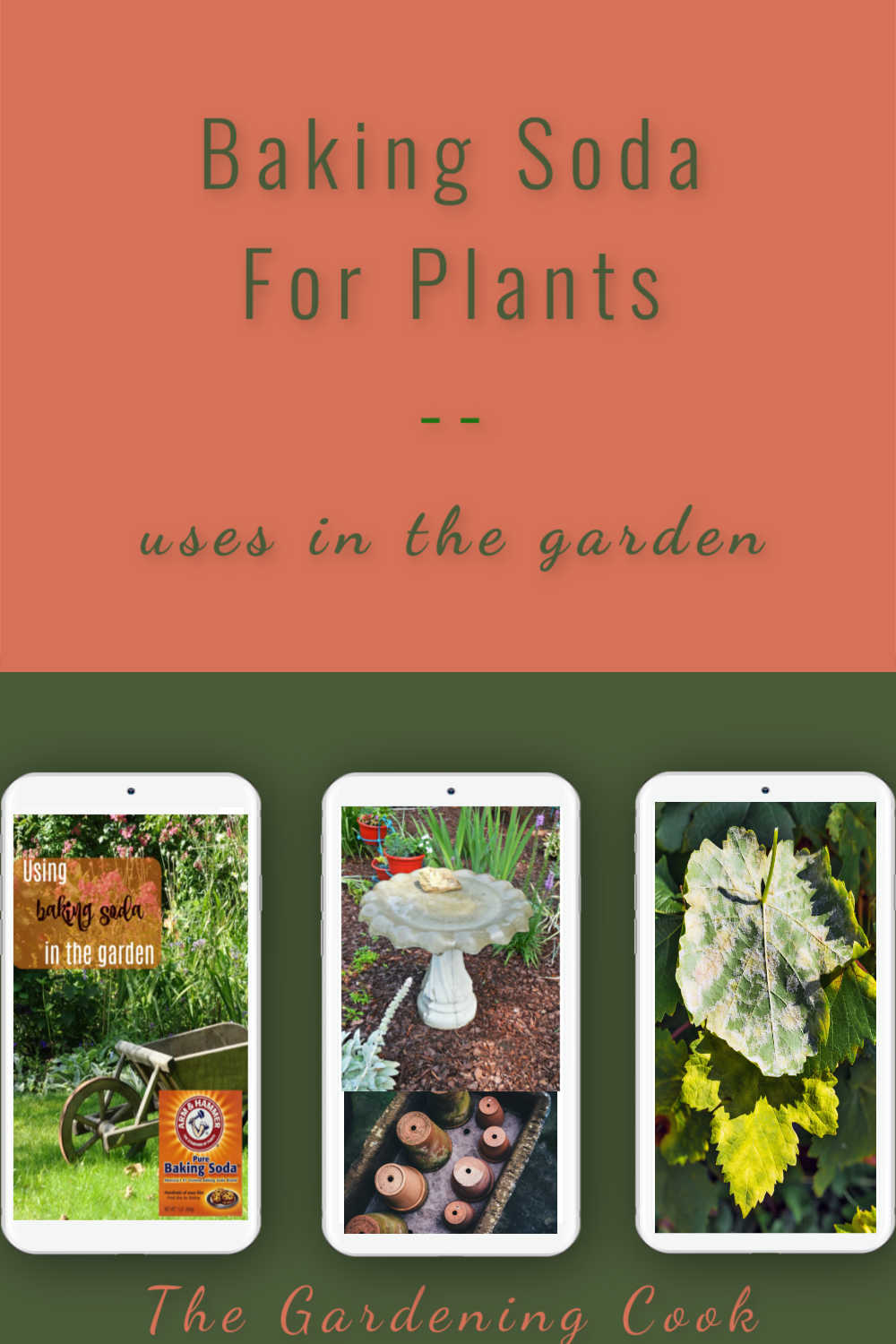 Three phones with pictures of garden items and words reading Baking soda for plants - uses in the garden.