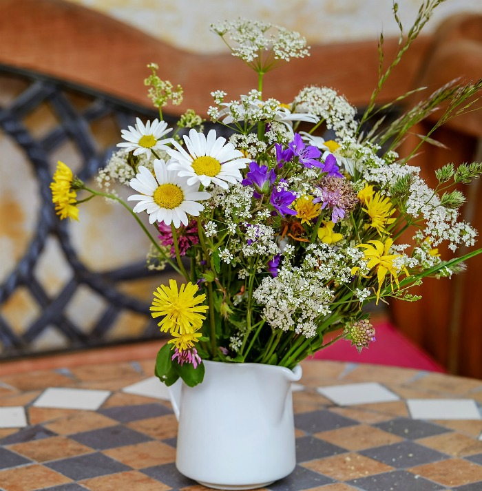 Shasta daisies make great cut flowers