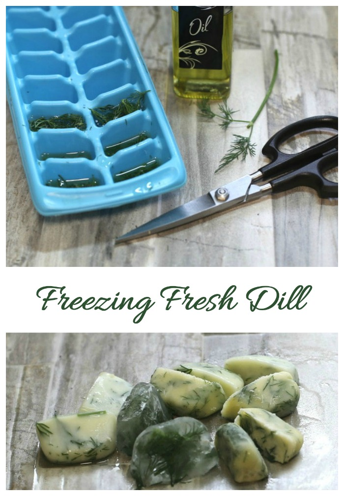 Freezing fresh dill is super easy to do