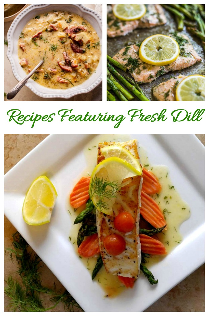 Delicious recipes using fresh dill for seasoning