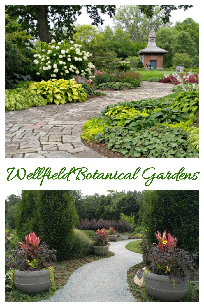 The landscaped paths at Wellfield Botanic Gardens are both rustic and formal