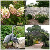 Wellfield Botanican Gardens
