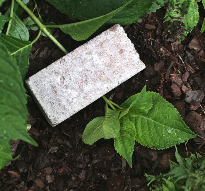 brick holding hydrangea stem