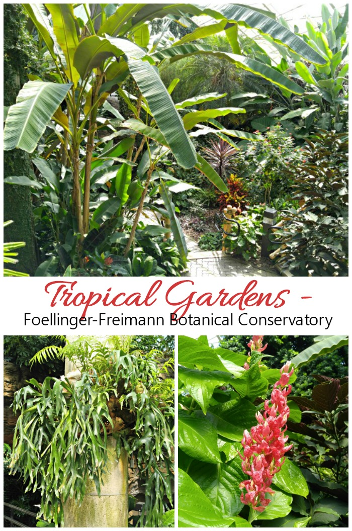 Tropical gardens of Foellinger-Freimann Botanical Conservatory