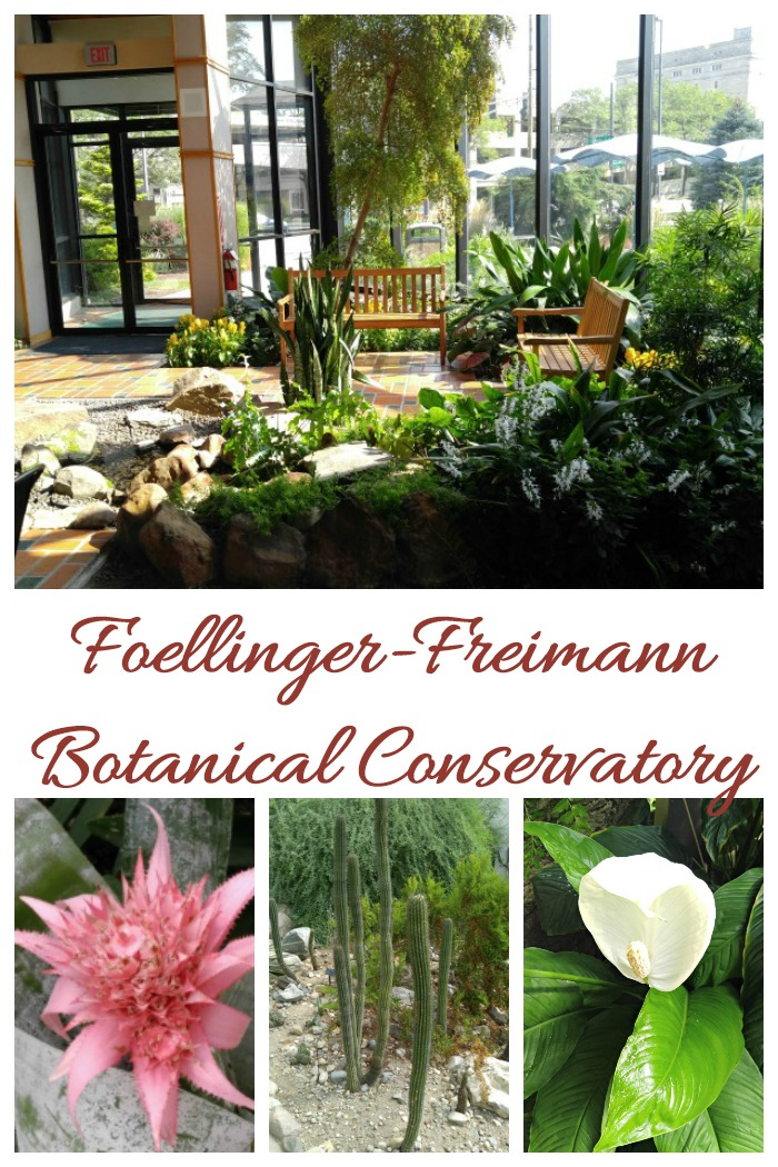 Join me for a virtual tour of the Foellinger-Freimann Botanical Conservatory