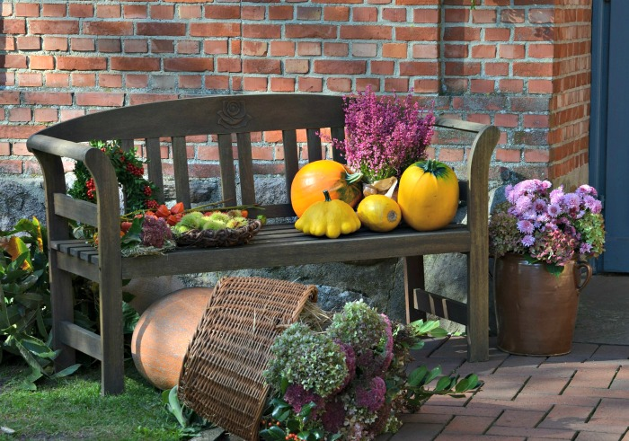 Autumn decor scene on a wooden bench
