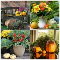 Fall decorations Ideas