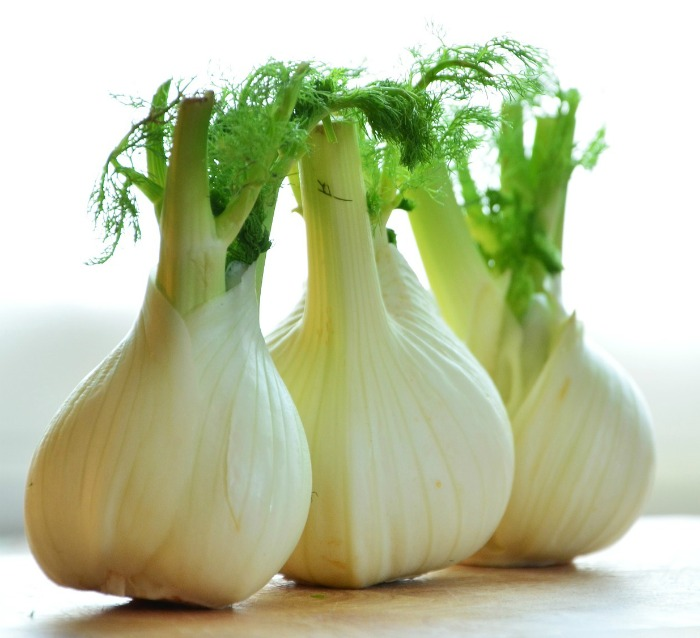 All parts of the fennel plant are edible.