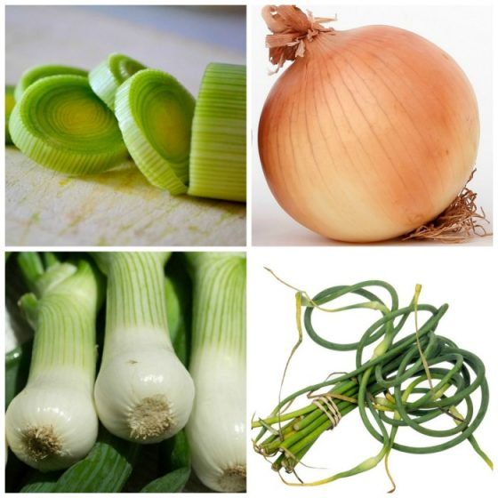 Shallot replacements in recipes