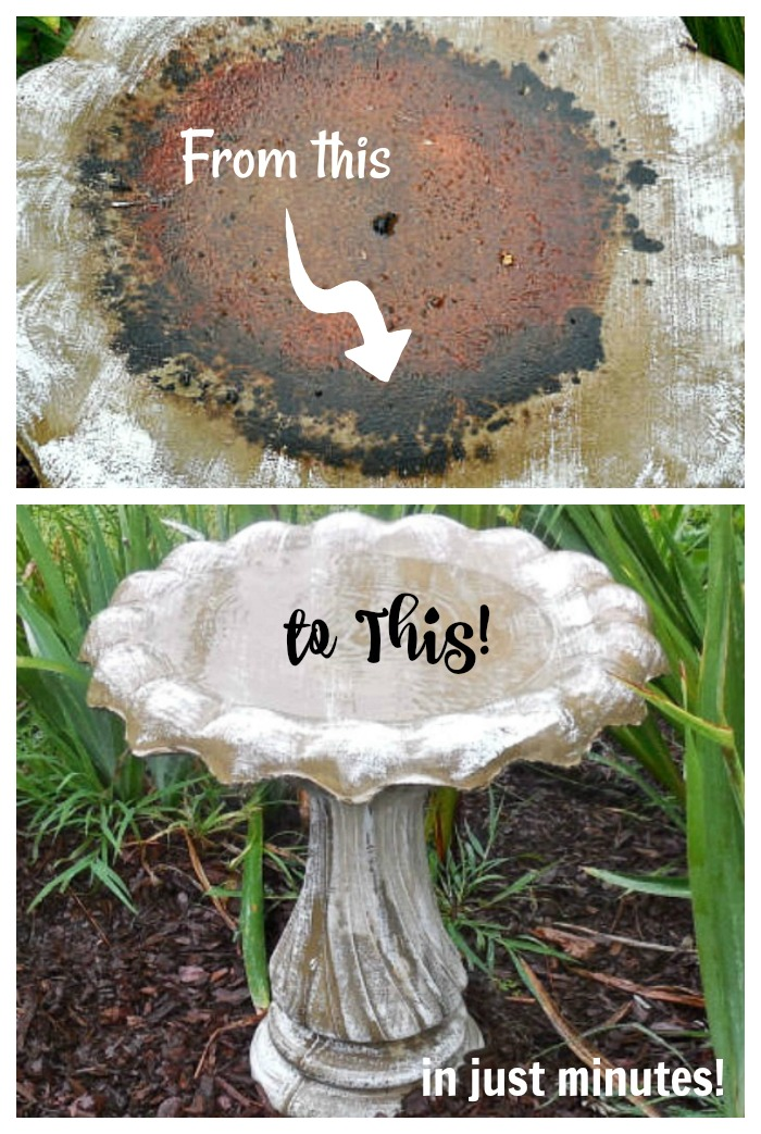 Find out how to clean a dirty bird bath in just minutes