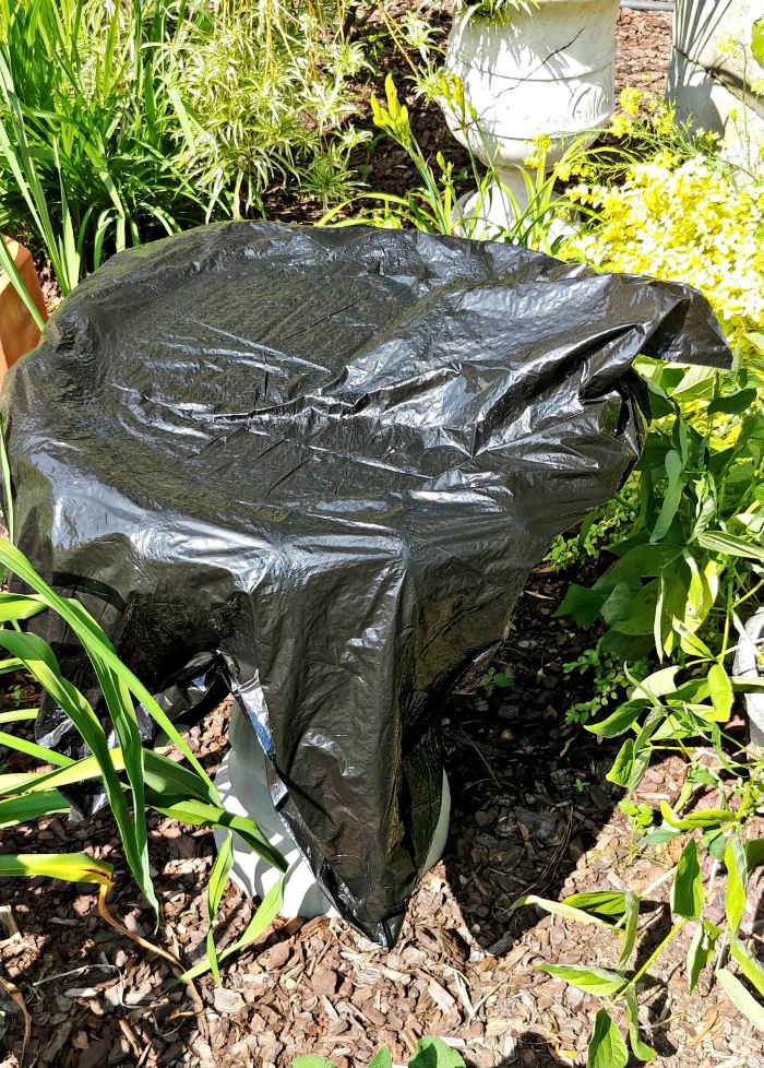 Covered bird bath with a black plastic garbage bag in a garden.