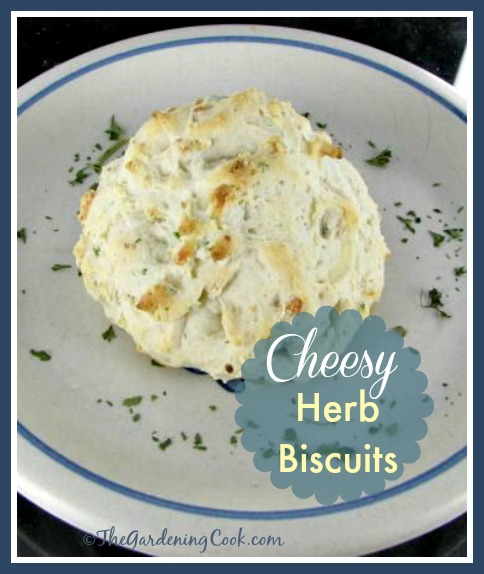 These cheesy herb biscuits have been lighted up to reduce the calories but flavor is added with a nice blend of fresh herbs