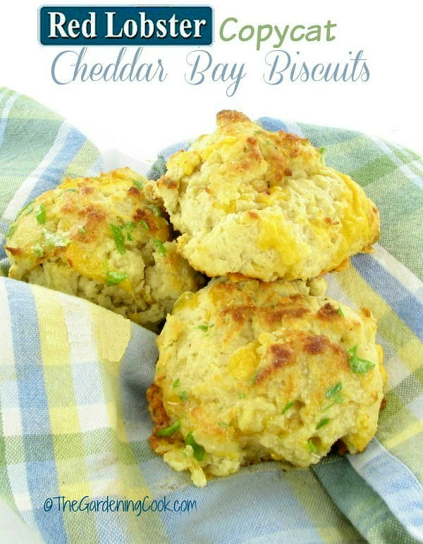 Red Lobster Copy Cat Cheddar Bay Biscuits