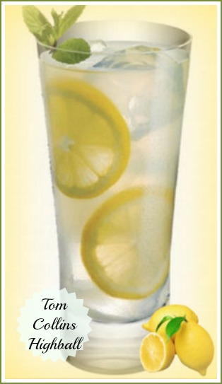 Tom Collins Drink - Refreshing Summer High Ball Cocktail
