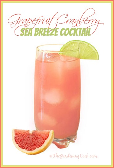 Grapefruit Cranberry Sea Breeze Cocktail