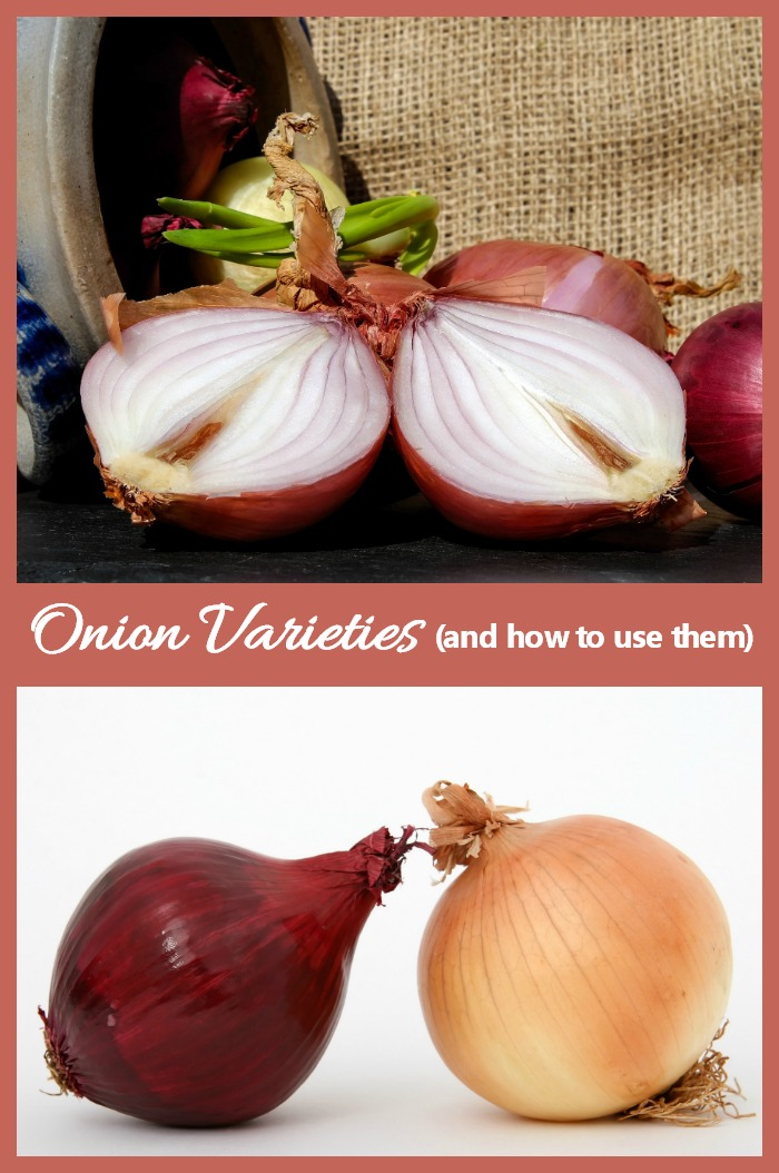 There are many types of onions. Each has its own distinctive flavor and is used in different types of recipes.