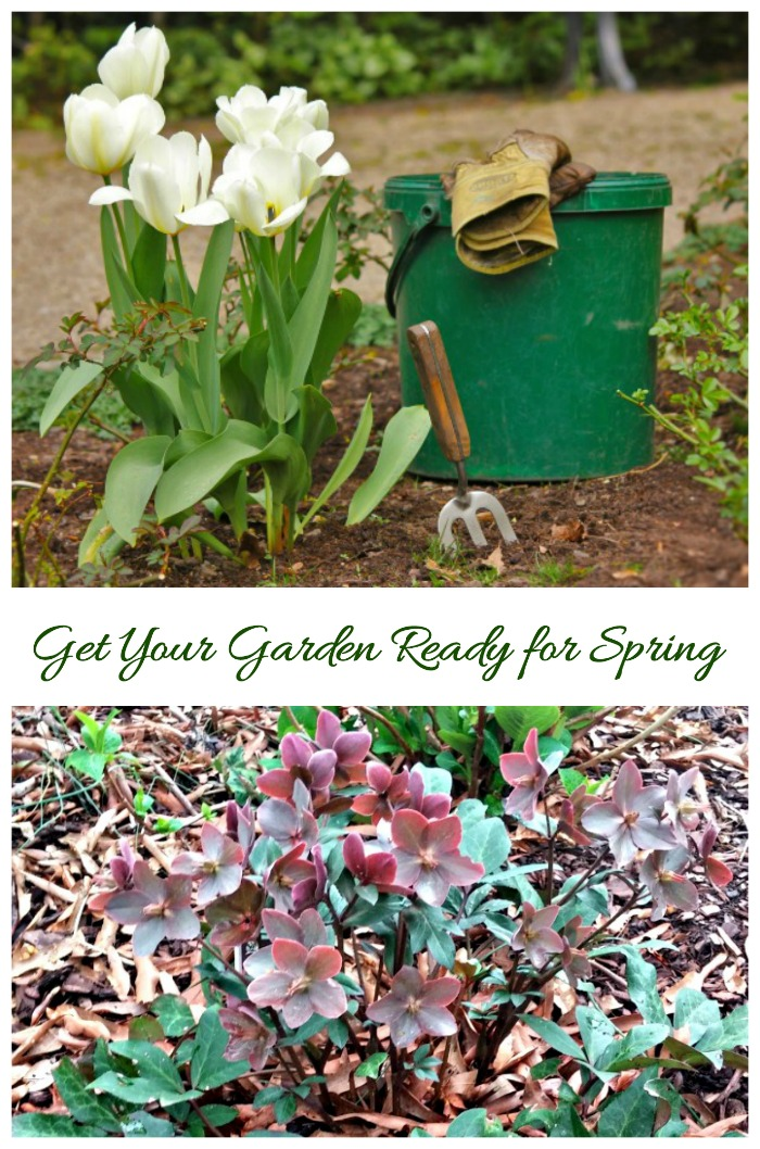 Tips for getting your garden ready for spring.
