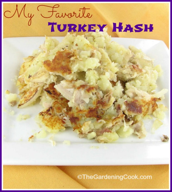 My Favorite Turkey Hash