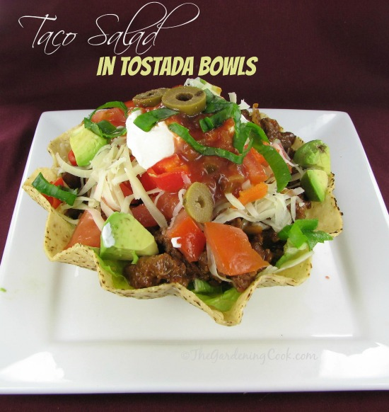 Taco Salad in Edible Tostada Bowls