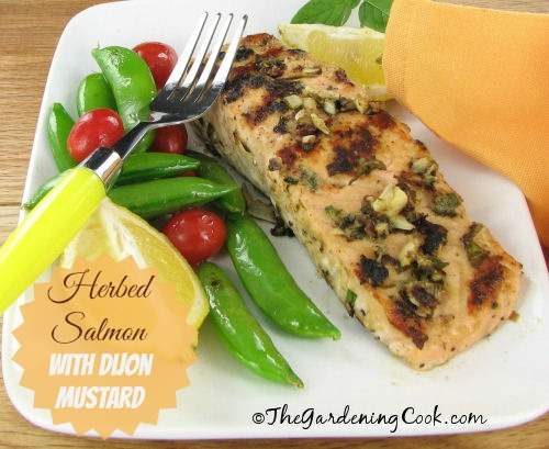 Herbed Salmon with Dijon Mustard
