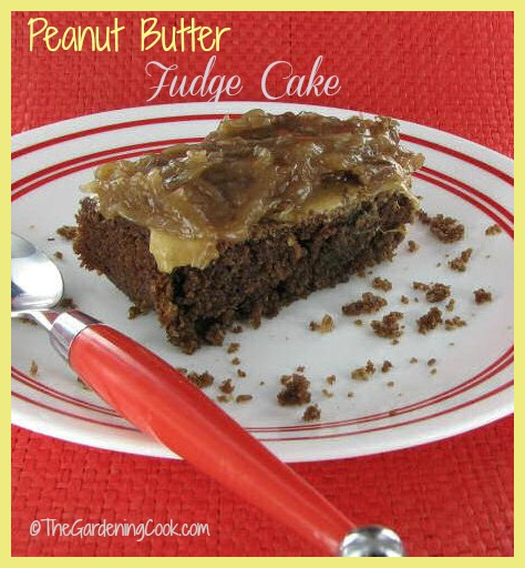 Peanut Butter Fudge Cake with Coconut Pecan Frosting