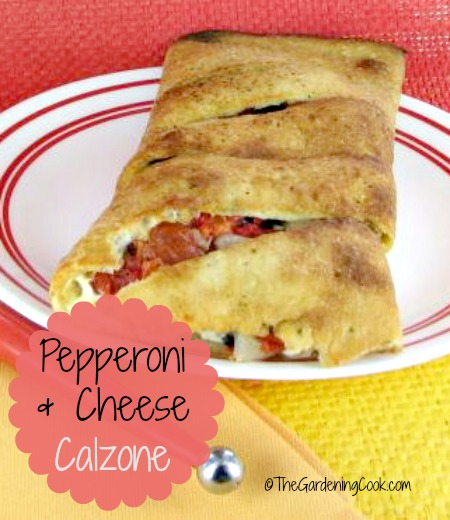Pepperoni and cheese calzone with vegetables