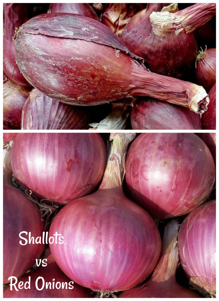 Shallots vs Red Onions