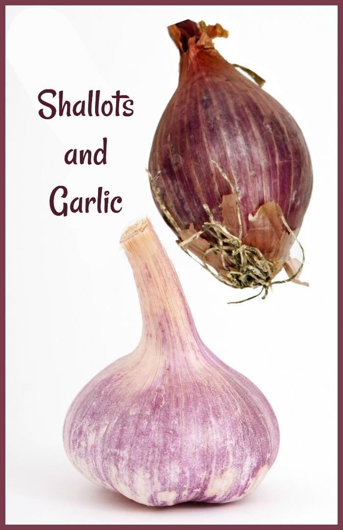 Shallots and garlic differences and similarities