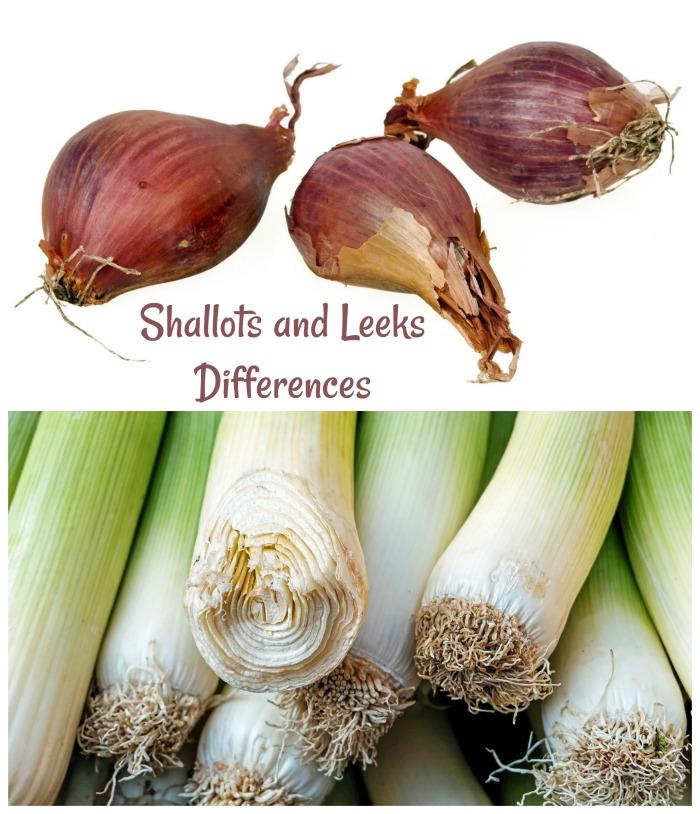 Shallots vs Leeks - Differences and Similarities