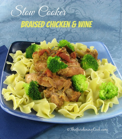 Slow Cooker Braised Chicken and Noodles with Wine & Tomatoes