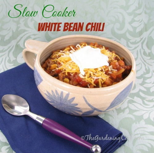 Savory Hearty White Bean Chili