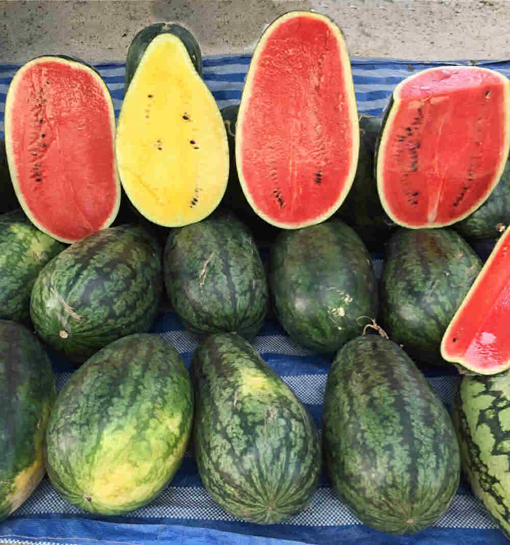 Cut watermelon with different colored flesh.