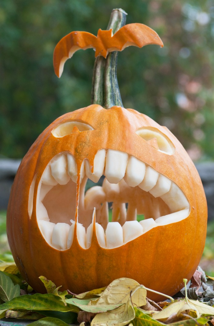 Toothy pumpkin carving with bat on stem