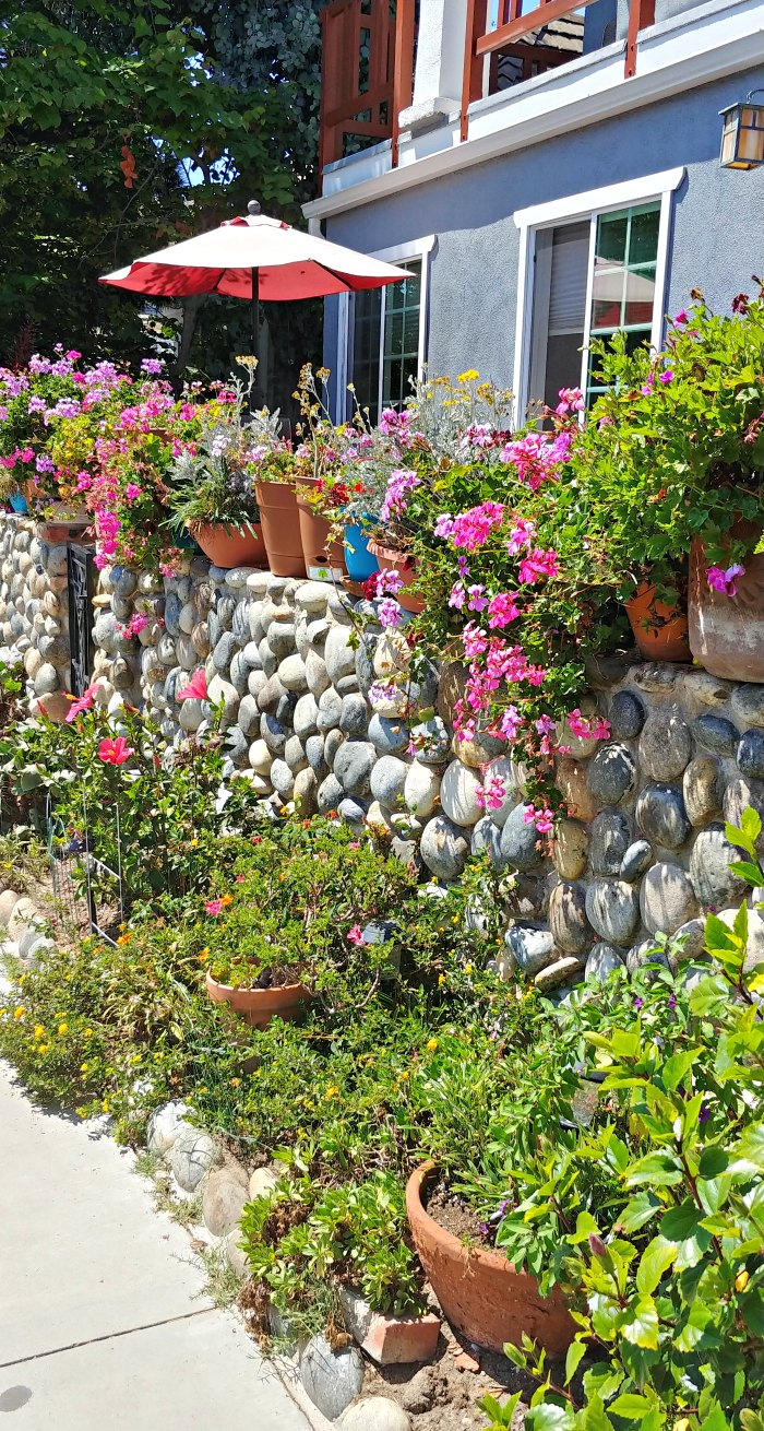 Rock wall with potted plants and flowers