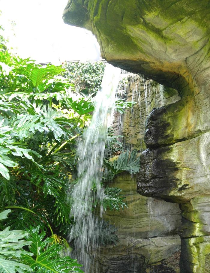 Foelliger-Freimann Botanical Conservatory waterfall