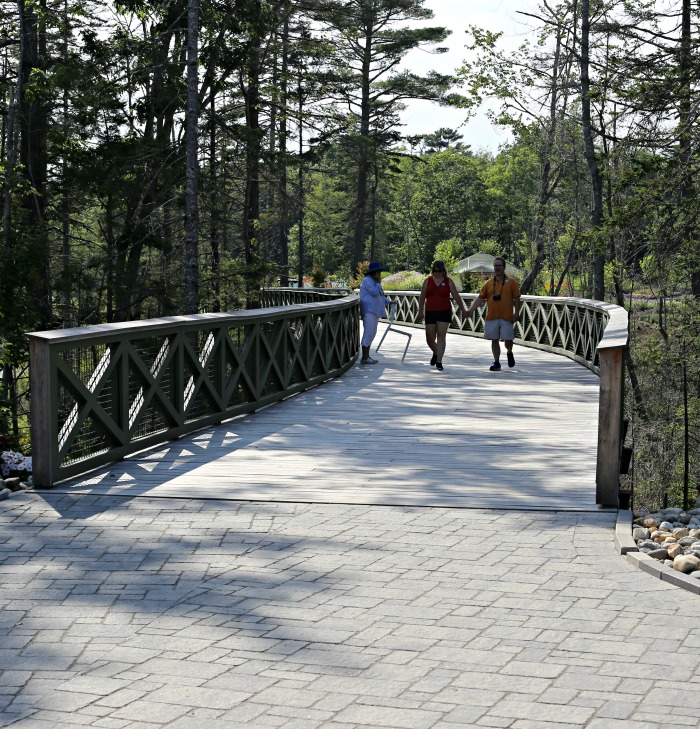 Curved Bridge at the Boothbay Botanic Gardens in Coastal Maine
