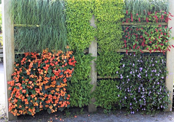 Living wall in the Lerner Garden of 5 senses