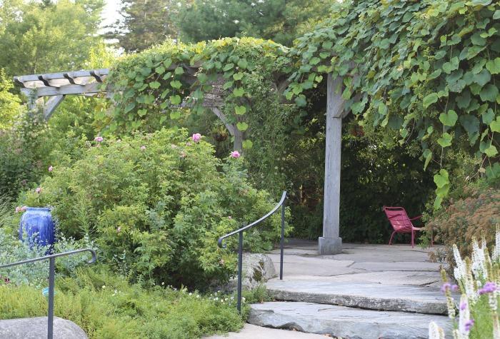 pergola and arbor walkway