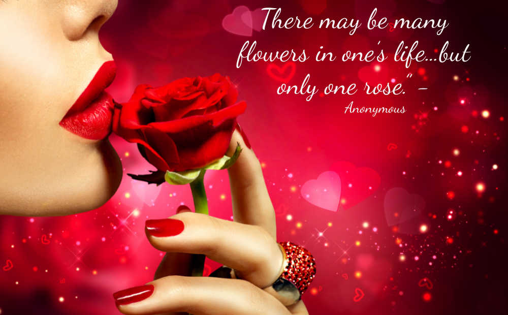 Girl holding a red rose with the quote: There may be many flowers in one's life…but only one rose.